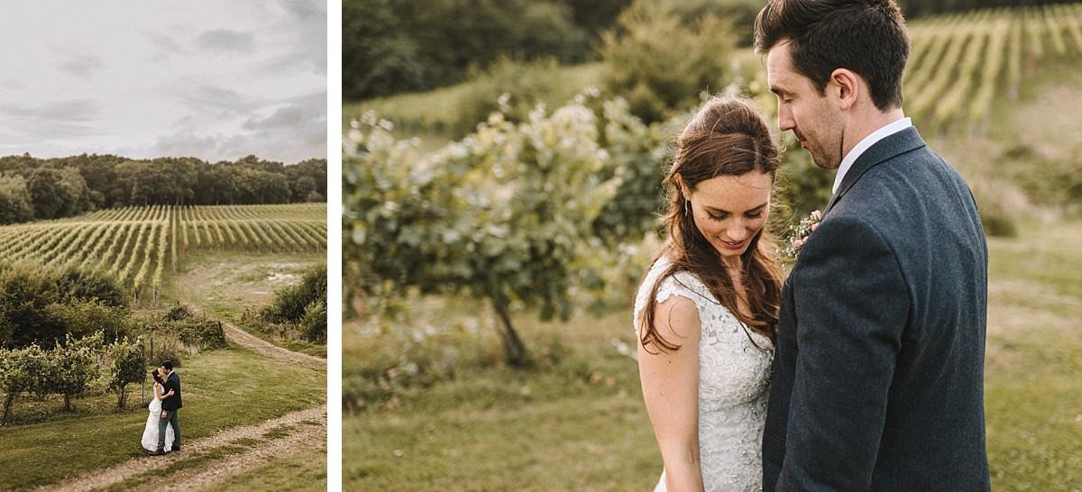 colour photograph across vineyard
